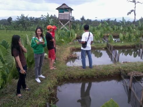 Rombongan Jogja sedang melihat-lihat kolam gurameh di Karangnangka